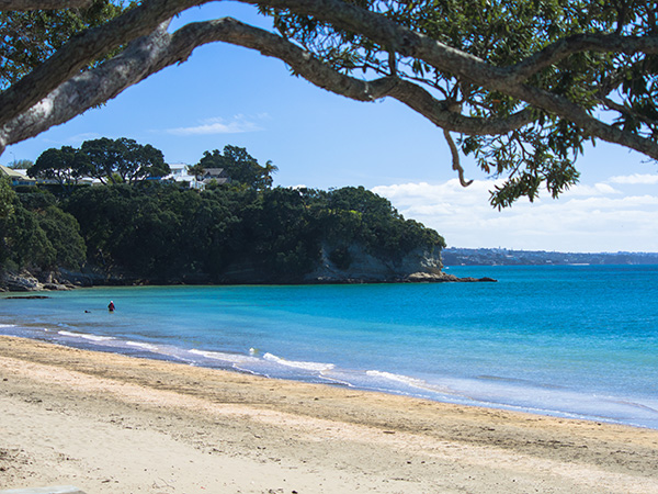 Cheltenham Beach Devonport New Zealand