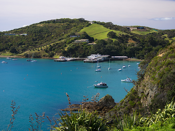 Ferry Terminal at Waiheke Island