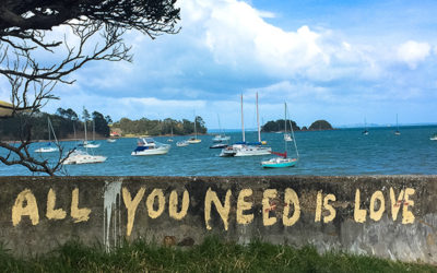 Waiheke Island Housesit  –  All you need is love