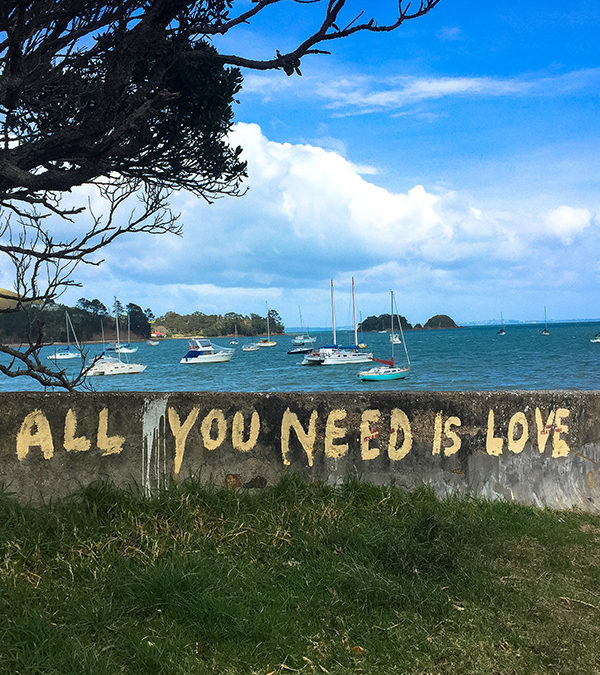 Waiheke Island Housesit  –  All you need is love