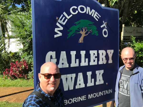 Gallery walk Mt Tamborine