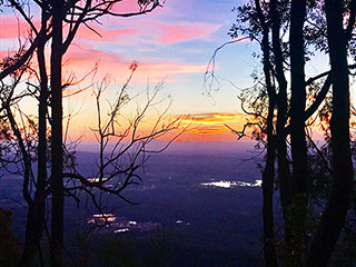 Mt Tamborine: Two months of art, music & food